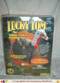 Lucky tom's box