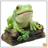 Singing log frog