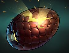 Spell Dragon Eggs