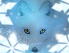 Spell Arctic Fox