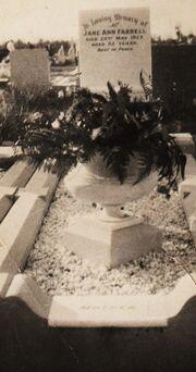 Jane Ann Farrell's Grave