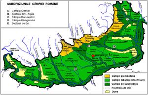 Câmpia Dunarii