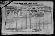 1901 census carr-bridget original