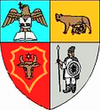 Actual Bistrita-Nasaud county CoA