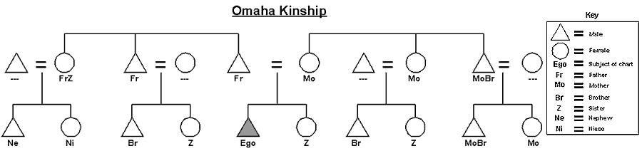 My Kinship Diagram Wiring Library