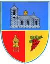 Actual Buzau county CoA.png