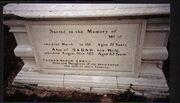 Sam under grave
