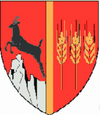 Actual Neamt county CoA.png