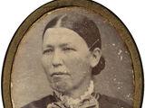 Sarah Ann P Cox (1837-c1897)