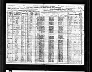 1920 census Jenkins