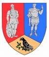 Actual Hunedoara county CoA