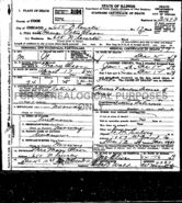 Hans Peter Olson (1844-1919) of Egeland death certificate