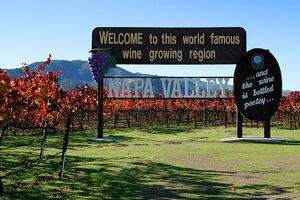 Lightmatter napa valley