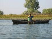 DanubedeltaSulinaarm2