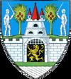 Actual Satu Mare county CoA