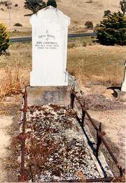 Ann Lamb (1816-1894) Grave