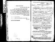 Lattin-Jarvis 1918 passport