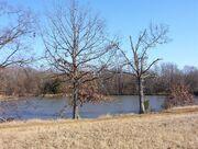 Shelby farms park scenic