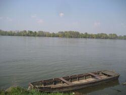 Danube, Sarengrad