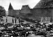 Lidice massacred men