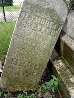 Seymore and Amelia Stevens (Youngs Cemetery Battle Creek MI)