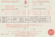 Mary Ann Finn (1858-1885) birth certificate