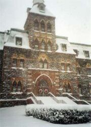 Stevens in the snow