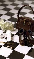 Gene Cocoa Crisp accessories