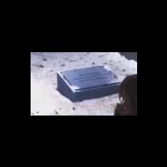 Lila's newest headstone