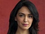 Leyla Mir (Nazanin Boniadi)