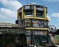 Field command icon