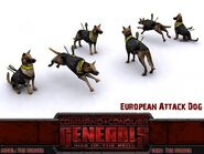 EU AttackDog