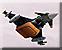 Bomblet strike icon