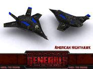 American Nighthawk New