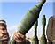 Armor piercing rockets icon
