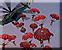 Conscript drop icon