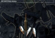 .243 Soft-Point Ammo