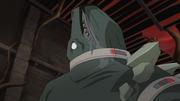 Skalamander with collar