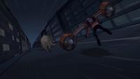 Rex chases Noah