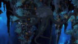 Squid EVO