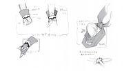 Tenzou satoyasu2