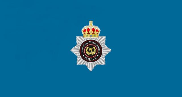 File:Flag of the Royal Metropolitan Police of Genovia (2).png