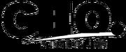 GAS 1998 print logo