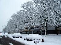 Sneeuw001