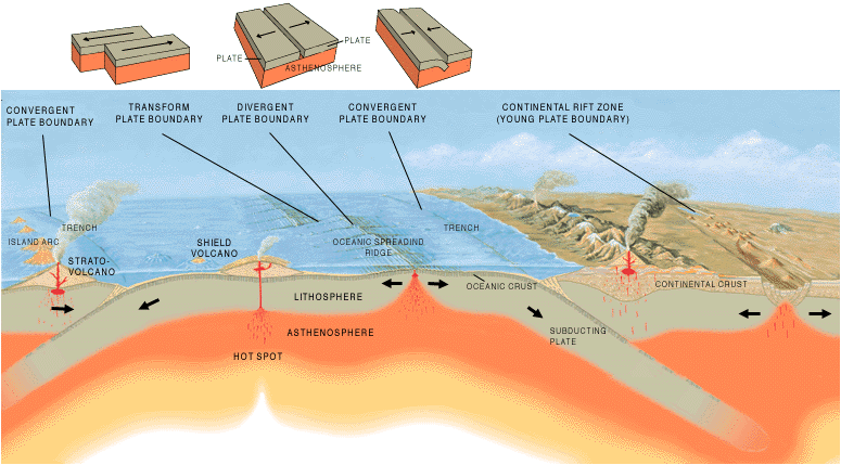 Abyssal plain geology wiki fandom powered by wikia oceanic crust is formed at a mid ocean ridge while the lithosphere is subducted back into the asthenosphere at oceanic trenches sciox Image collections