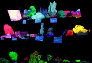 Fluorescent mineral collection