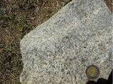 Granodiorite