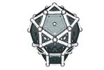 Skull shape 5