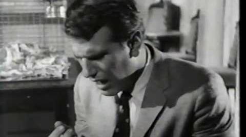 The Black Cat (1966) Trailer