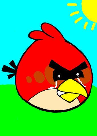 Lost Angry Birds Dvd Geoshea S Lost Episodes Wiki Fandom